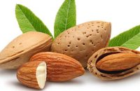 why-soaked-almonds-are-better-than-raw-almonds